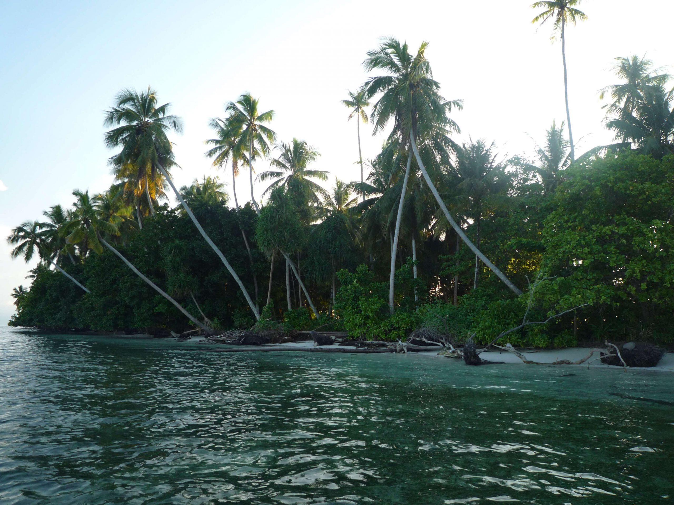 Ungalabu Island